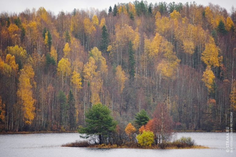 Осенний пейзаж Кенозера. Фото: Игорь Стомахин / Strana.ru. Strana.Ru