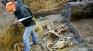 Раскопки на Бородинском поле. Общая могила солдат и лошадей