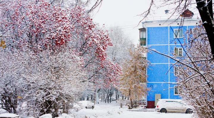 Памятник сеятелю откроют на площади Октября в Барнауле
