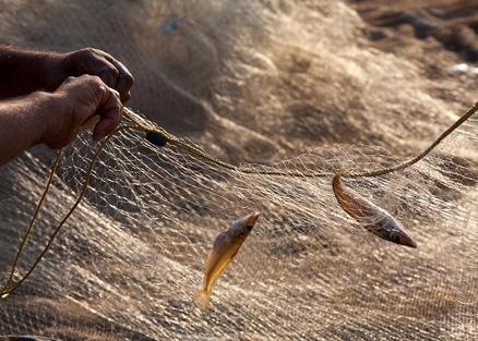 Картинки по запросу рыбацкая сеть