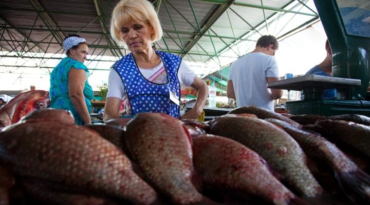 Санкции вынуждают пересмотреть программу поддержки аграриев