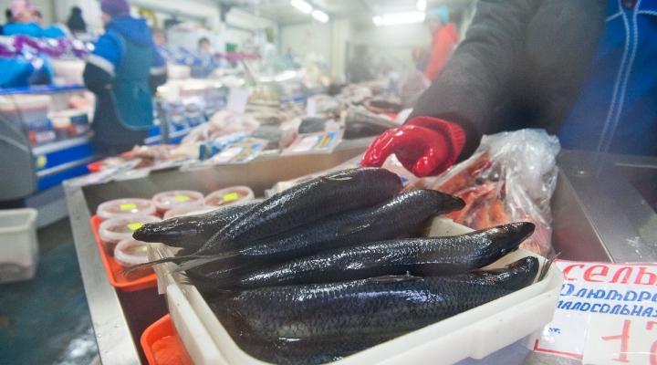 магазины в петропавловске рыболовные