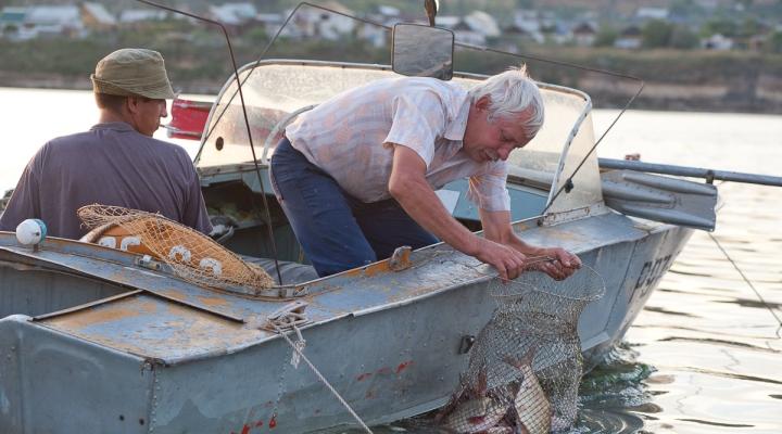 прогноз клева рыбы в приволжье самарской области
