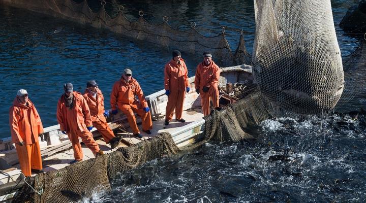 сахком форум южно-сахалинск рыбалка